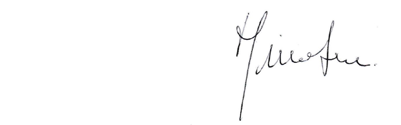 Firma Giacomo Serci space